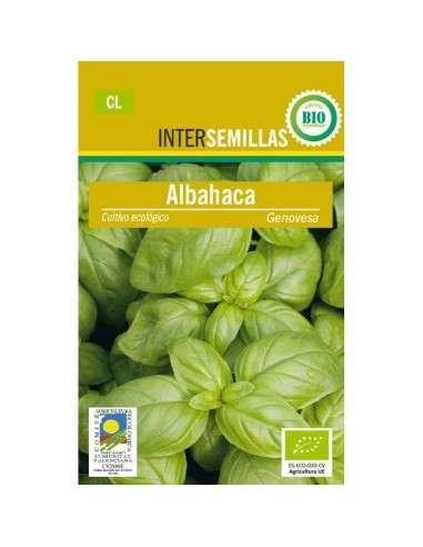 Semillas de Albahaca Genovesa Ecológica 100g. INTERSEMILLAS - 1