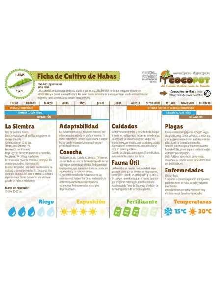 Semillas de Haba Aguadulce Acualonga 250gr. Semillas Batlle - 2