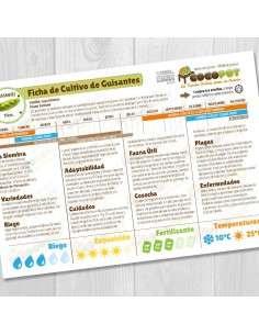 Guía Cultivo de Guisantes