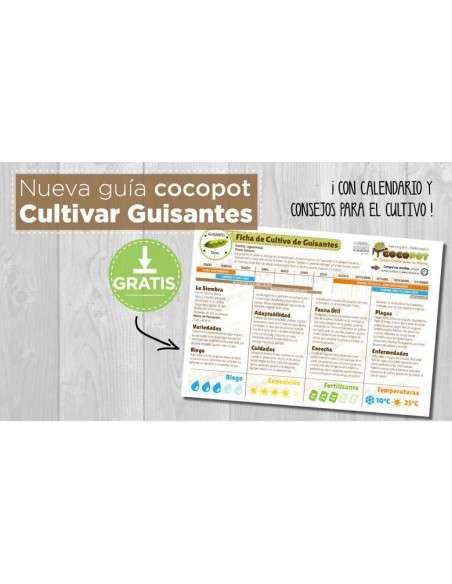 Guía Cultivo de Guisantes COCOPOT - 4