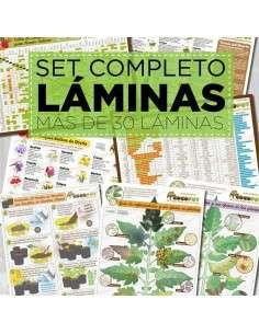 Set Completo Láminas IMPRESAS
