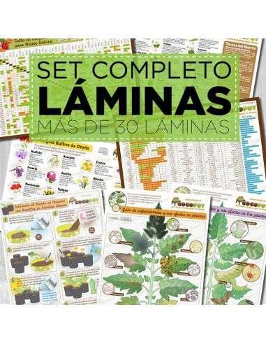 Set Completo Láminas IMPRESAS COCOPOT - 1