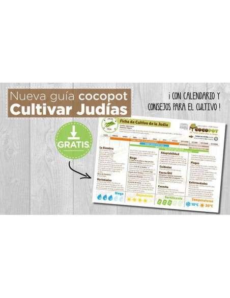 Guía Cultivo de Judías COCOPOT - 2