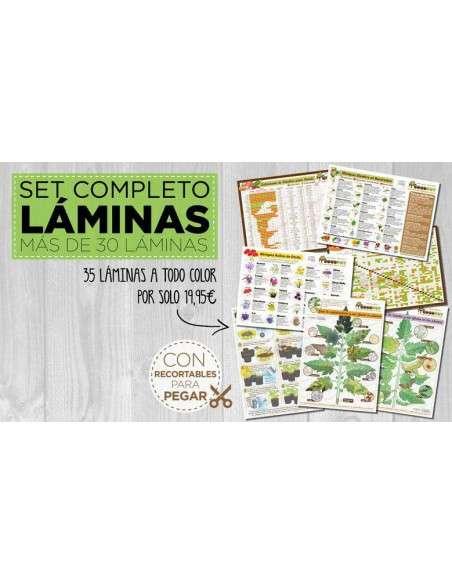 Set Completo Láminas IMPRESAS COCOPOT - 2