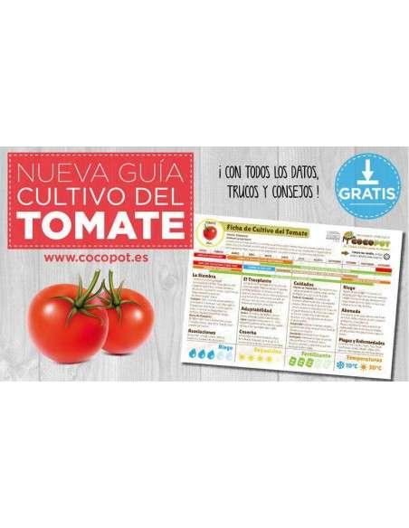 Semillas Tomate San Marzano Ecológicas INTERSEMILLAS - 3