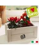 Caja Huerto Tomate y Guindilla