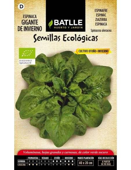 Semillas de Espinaca Gigante de Invierno Ecológica 100g Semillas Batlle - 1