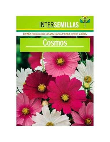 Semillas de Cosmos Vega 25g. - 3700 Semillas INTERSEMILLAS - 1