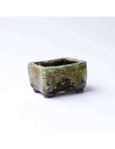 Maceta Bonsái Doragon 10/6 DRAC Ceramic - 38