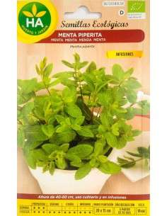 Semillas ECO Menta Piperita HA