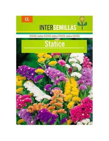 Statice Variado 1000 semillas INTERSEMILLAS - 1