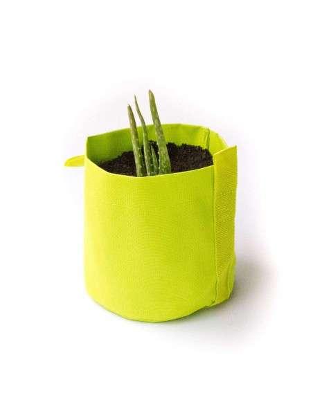 Kit Aloe Vera en maceta Verde de 1,3l. COCOPOT - 2