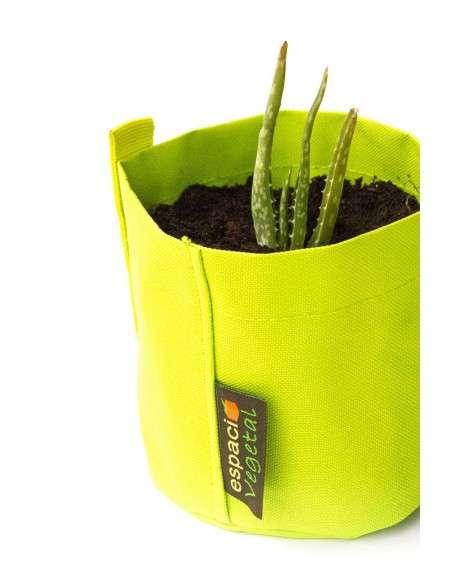 Kit Aloe Vera en maceta Verde de 1,3l. COCOPOT - 4