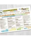 Semillas de Calabacín Verde Claro Genovese Ecológicas
