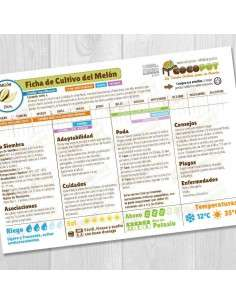 Guía Cultivo del Melón COCOPOT - 1