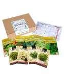 Semillas Ecológicas Aromáticas 9 sobres