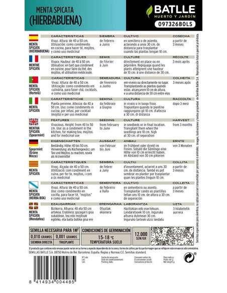 Semillas de Menta Spicata Hierbabuena Semillas Batlle - 2
