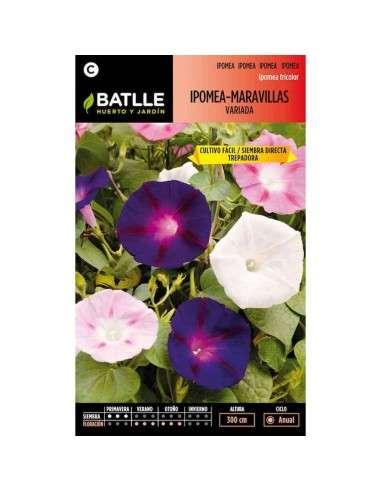 Semillas de Ipomea-Maravillas Variada Semillas Batlle - 1