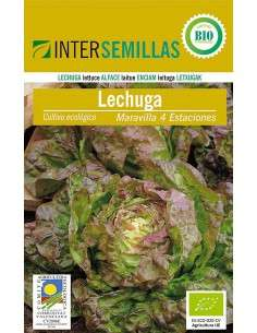 Semillas de Lechuga Maravilla 4 Estaciones ECO 4g. INTERSEMILLAS - 1