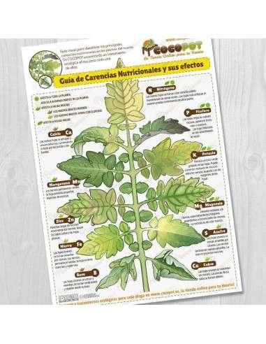 Lámina Guía Carencias Nutricionales COCOPOT - 1