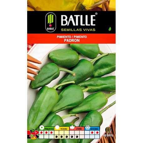 Comprar semillas de pimiento ofertas online en cocopot for Cultivo pimiento huerto urbano