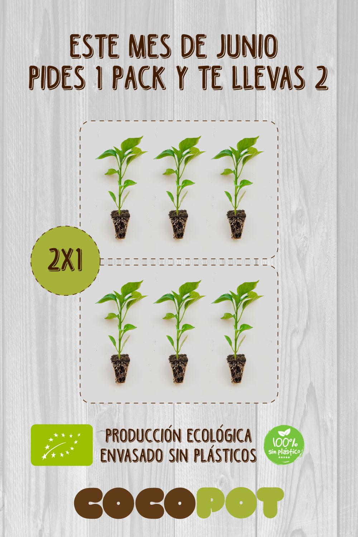 oferta plantel ecológico