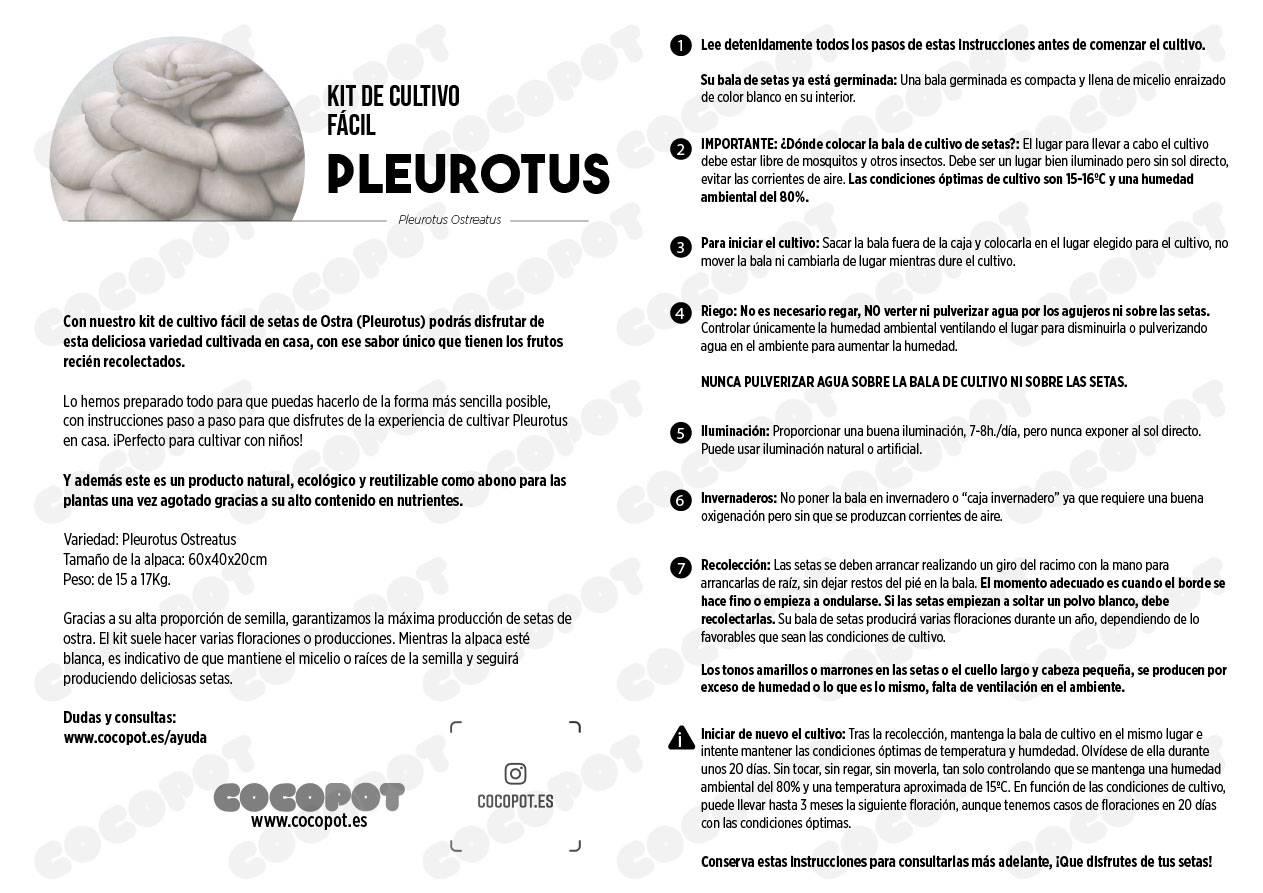 Instrucciones setas pleurotus