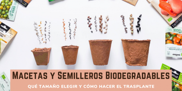 Macetitas y semilleros de turba biodegradable